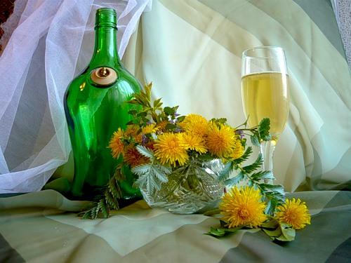Настоянка кульбаби на горілці або на спирту: властивості, застосування, як приготувати.