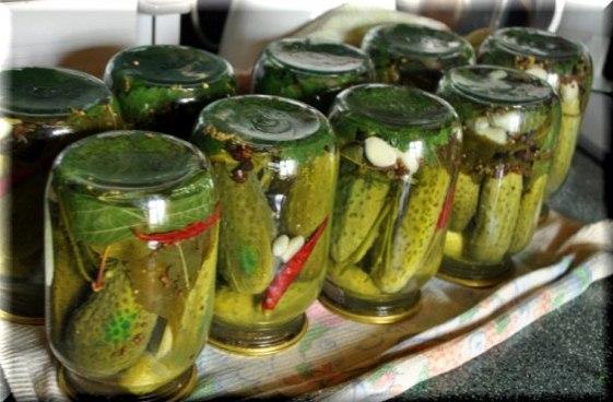 Солоні огірки з часником і кропом – холодний спосіб засолювання огірків на зиму в банках.