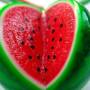 Рослина кавун: опис, властивості, користь і шкода для здоров'я. Який плід кавуна, ягода це або фрукт.