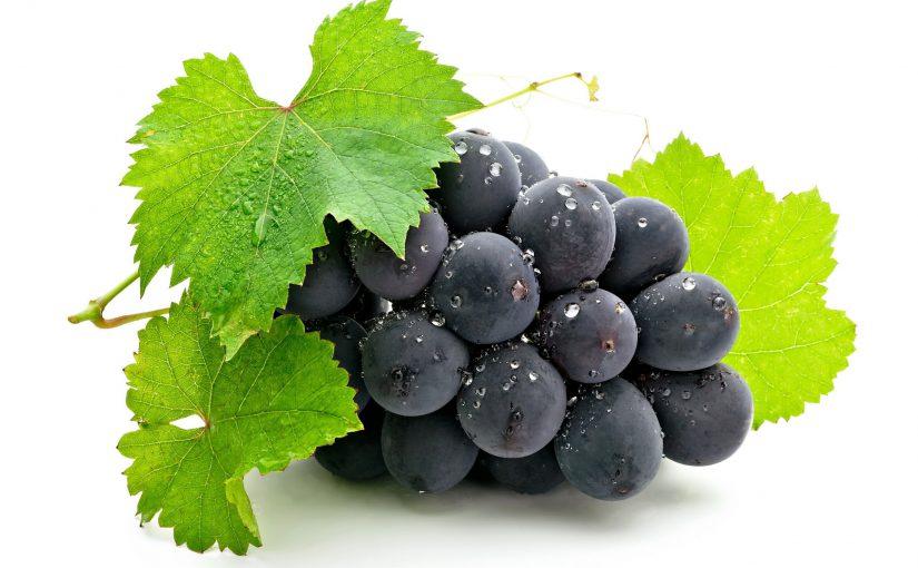 У чому користь винограду і в чому шкода: калорійність, корисні властивості і вітаміни в винограді.