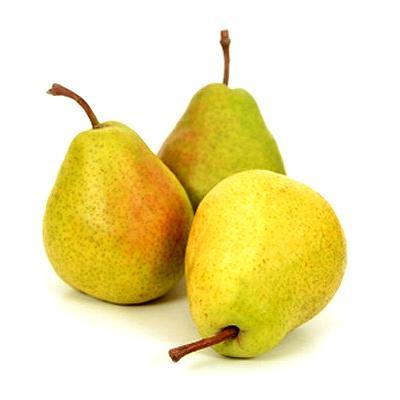 Користь груші і шкода для організму. Склад, характеристика, властивості і калорійність. У чому цінність або які вітаміни в груші.