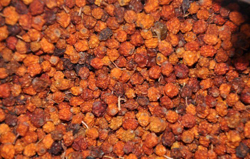 Сушена червона горобина – як сушити ягоди в домашніх умовах правильно: в духовці, електросушарці або природною сушкою.