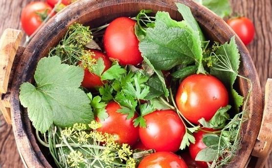 Смачні солоні помідори – рецепт як солити помідори з листям молодої кукурудзи на зиму швидко.