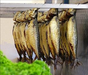 Напівгаряче копчення риби – як правильно коптити рибу в домашніх умовах.