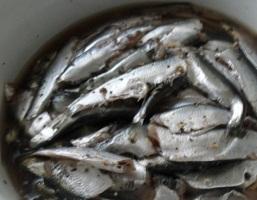 Домашнє засолювання кільки, оселедця, салаки або як засолити рибу в домашніх умовах.