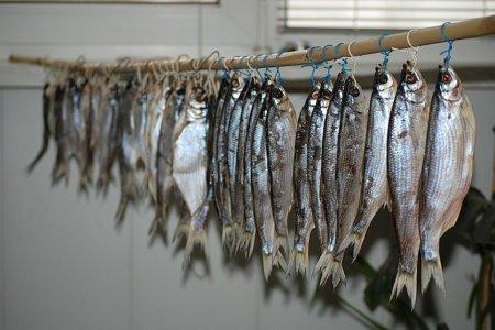 Як швидко посолити дрібну рибу в домашніх умовах або смачна риба швидкого засолу.