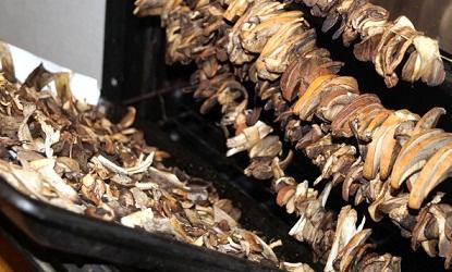 Як правильно сушити гриби в домашніх умовах і способи сушіння, правильне зберігання сухих грибів.