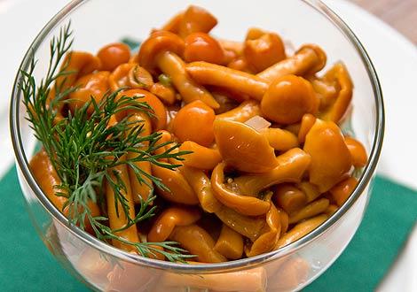 Просте маринування грибів в домашніх умовах – способи маринування грибів в банках на зиму.