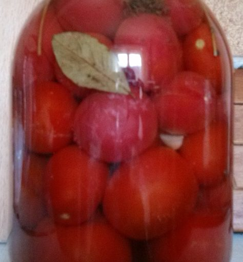 Мариновані помідори без стерилізації – покроковий рецепт з картинками як маринувати помідори в банках.