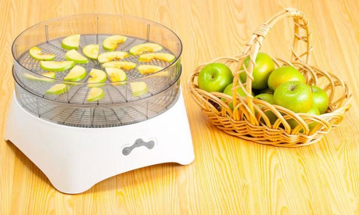 Як сушити яблука в електросушарці – при якій температурі і скільки сушити яблука