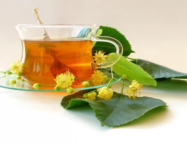 Коли і як правильно збирати і сушити липу для чаю: заготівля липового цвіту на зиму