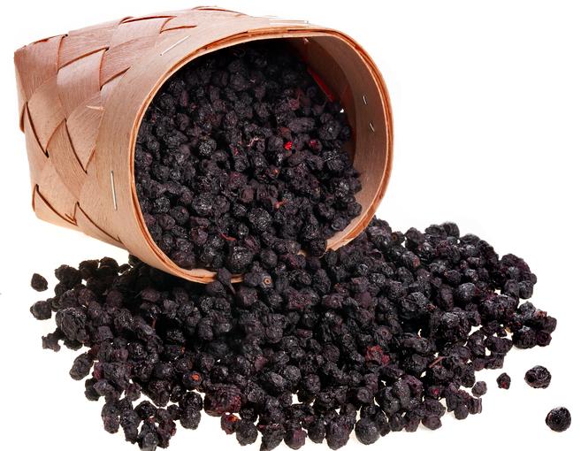 Сушка чорної смородини – як правильно засушити смородину в домашніх умовах