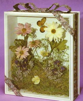 Сушимо гербарій в домашніх умовах: заготівля сухоцвітів і листя для гербарію