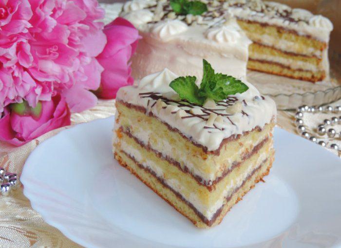 Швейцарський торт – домашній бісквітно-сирний торт з шоколадом