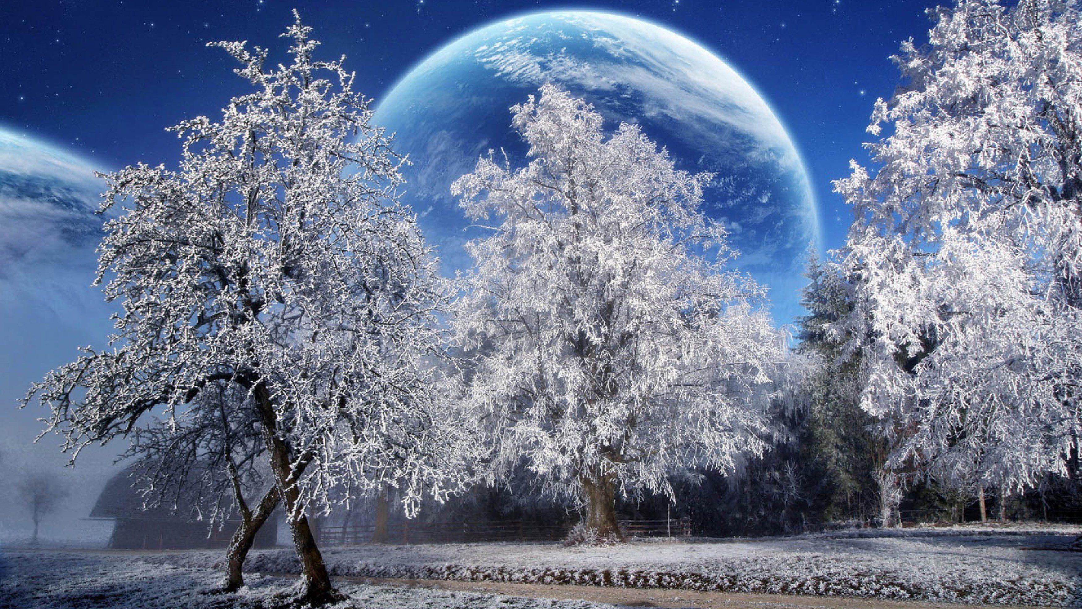 Живые Обои Для Рабочего Стола Бесплатно Зима