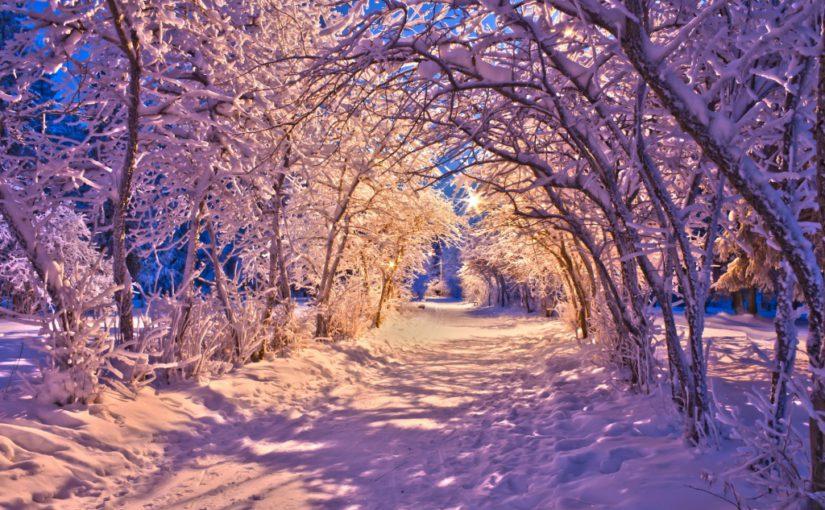 Картинки зимової природи і красиві фото зимової природи – кращі новорічні заставки