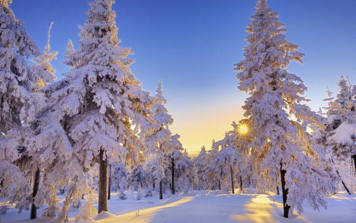 Новорічні заставки на робочий стіл і телефон - красиві зимові фотографії природи і нові новорічні картинки