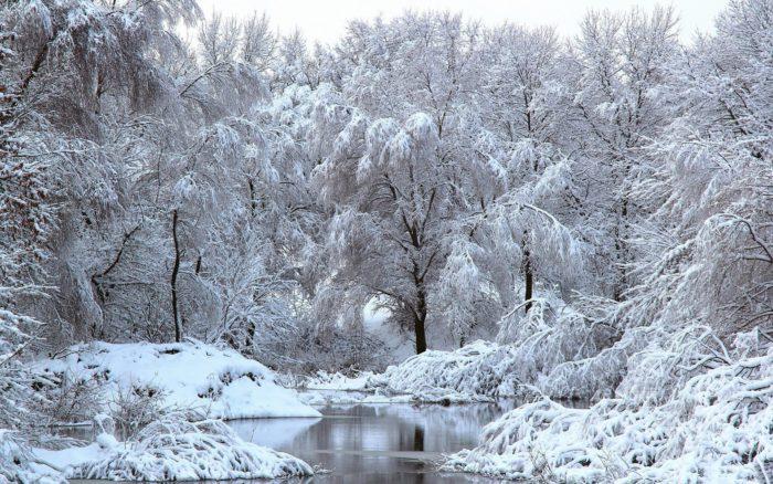 Картинки зимової природи і красиві фото зимової природи - кращі новорічні заставки