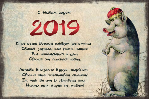 Нові вітальні листівки 2019 із свинками, поросятами та кабанчиками