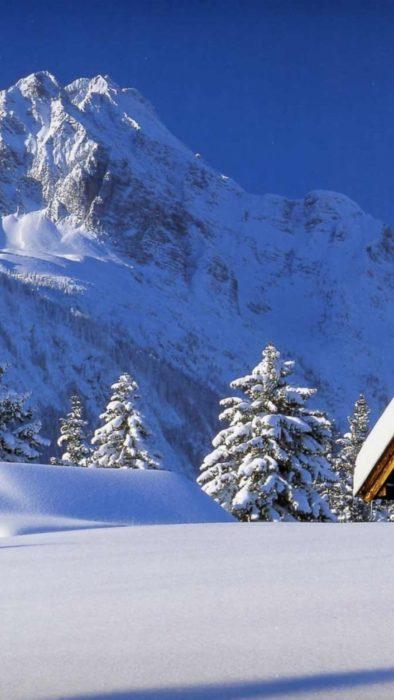 Гарна вертикальна фото-заставка на смартфон - засніжений ліс, гори