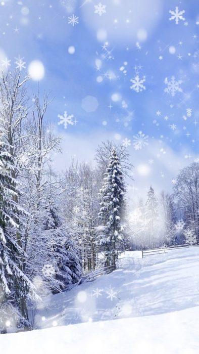 Зима красива картинка природи на айфон - зимовий ліс