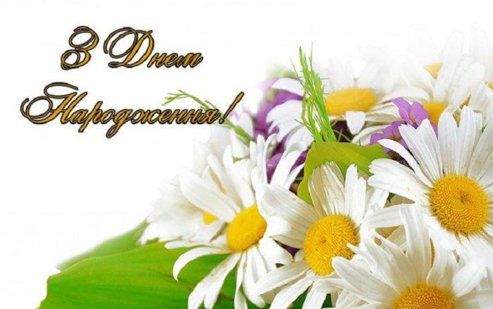 Класичні листівки з днем народження - коротке привітання, букет польових квітів, з ромашками