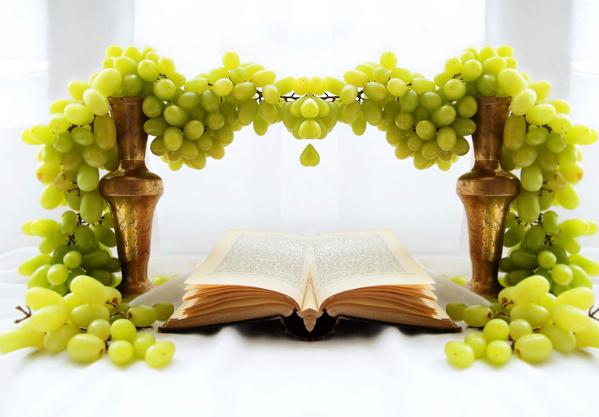 Виноградна лоза