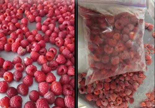 Малина свіжа і ягоди малини сушені