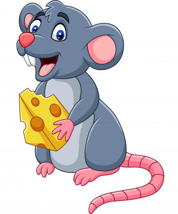 Прикольні малюнки з щурами та пацюками