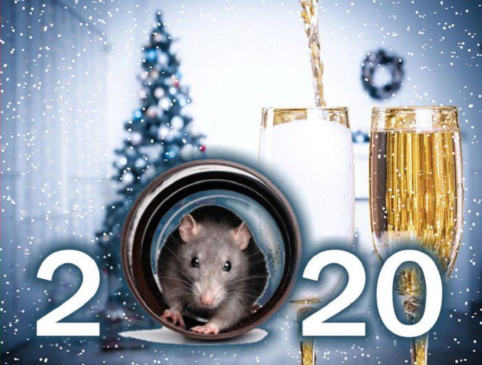 Новорічні листівки з роком Щура-Пацюка