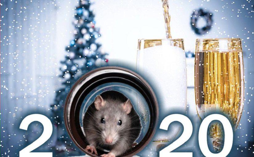 Новорічні листівки з роком Щура-Пацюка 2020 року, анімаційні листівки з Новим роком 2020 з мишками,щуром або пацюком – символом року, кращі картинки-привітання