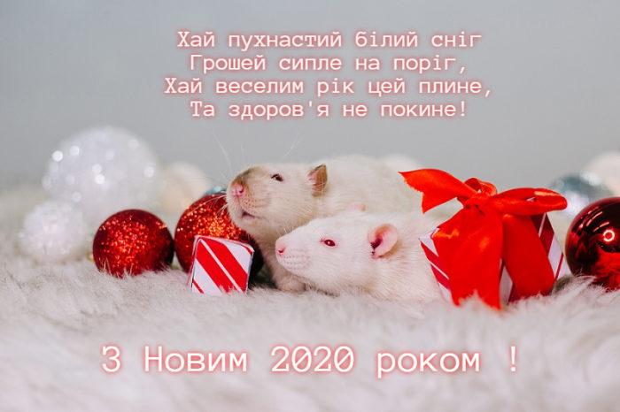 Новорічні листівки 2020 рік Щура з поздоровленнями