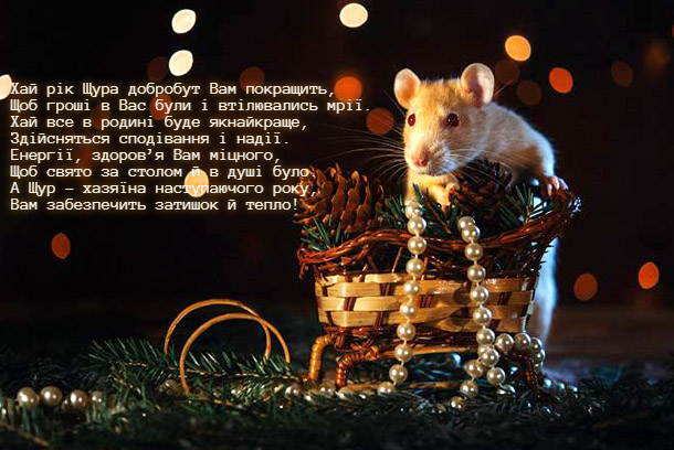 Гарні листівки з новорічними щурами і мишами - короткі вірші-привітання