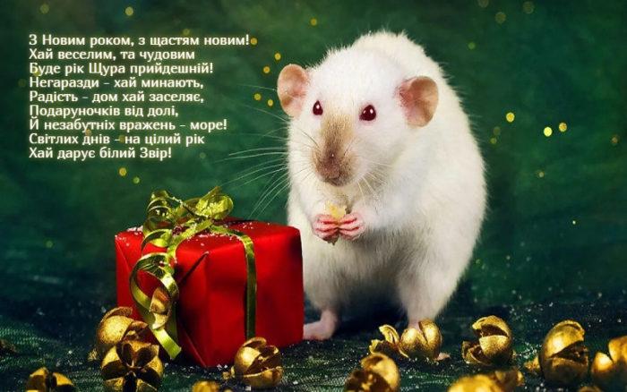 Новорічні листівки з щурами, пацюками і м