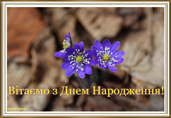 Красива листівка до дня народження з квітами польовими