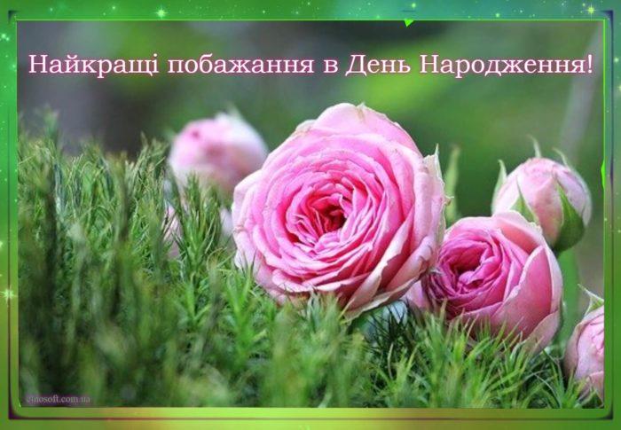 Красива листівка до дня народження - квітковий букет з півоній