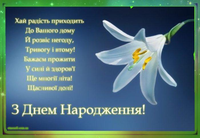 Гарна відкритка до дня народження з квітами - біла лілія