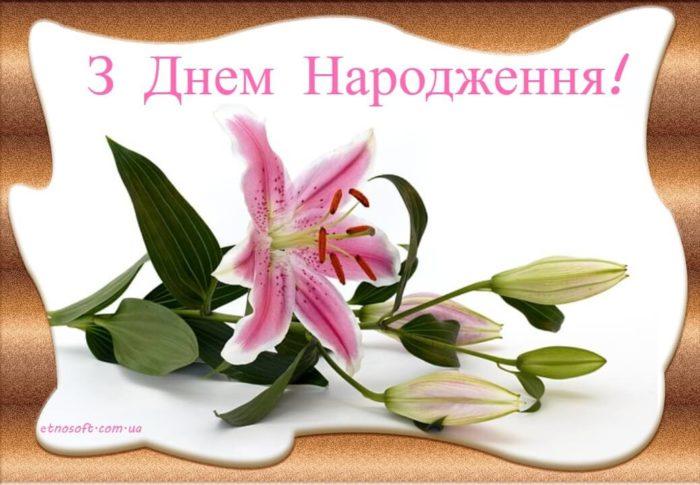 Вітальна листівка на день народження з квітами - красива рожева лілія