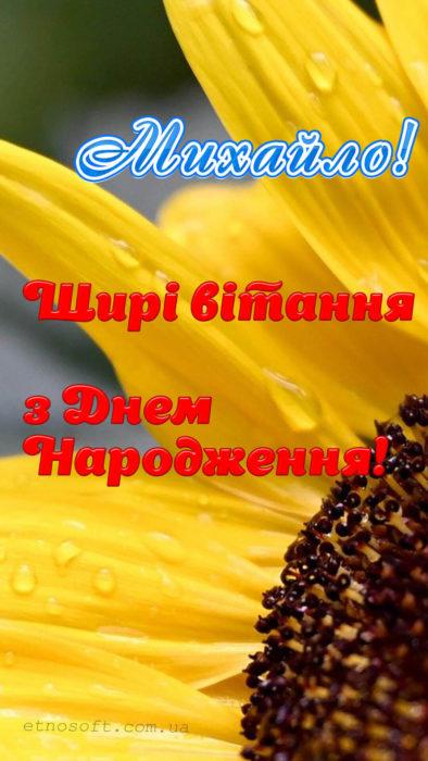 Гарна відкритка для Михайла на День Народження - вертикальне зображення для телефона, смартфона, айфона