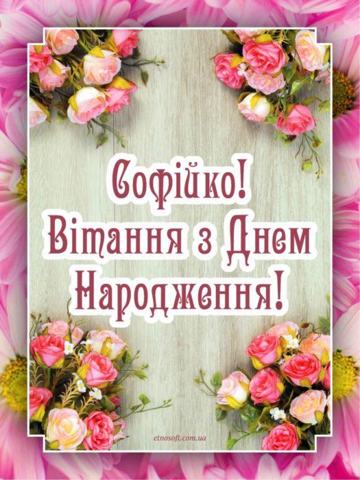 Гарна відкритка до Дня Народження для Софії - гарне вітання для Соні