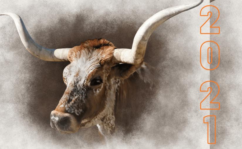 Новорічні шпалери рік Бика 2021: картинки на робочий стіл з бичками, корівками, телятами, заставки в хорошій якості