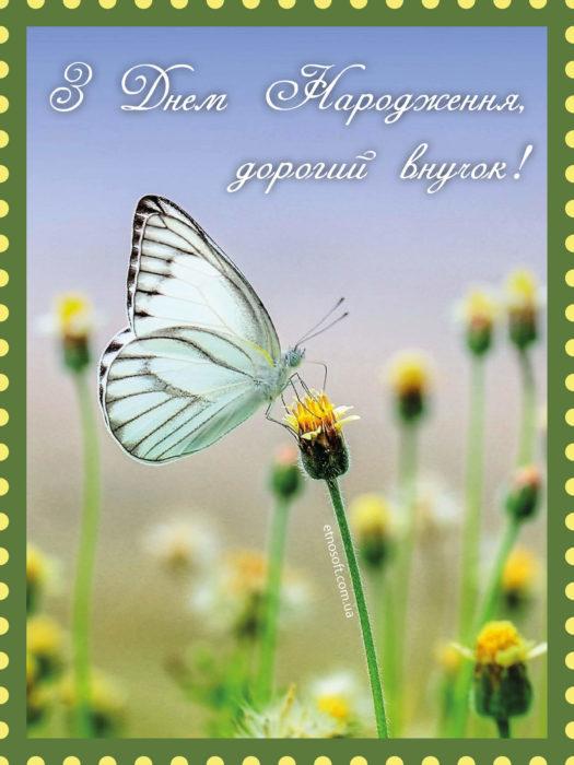 Вітальна листівка на День Народження внуку від бабусі, дідуся з метеликом