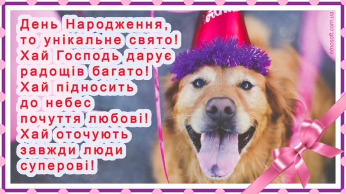 Вітальна листівка до Дня Народження прикольна, весела, жартівлива з собакою