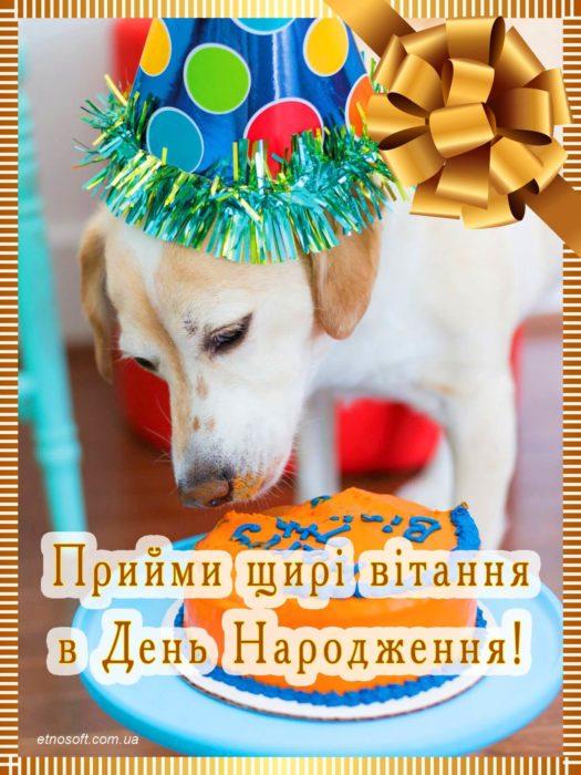 Гарна листівка з Днем Народження з собачкою