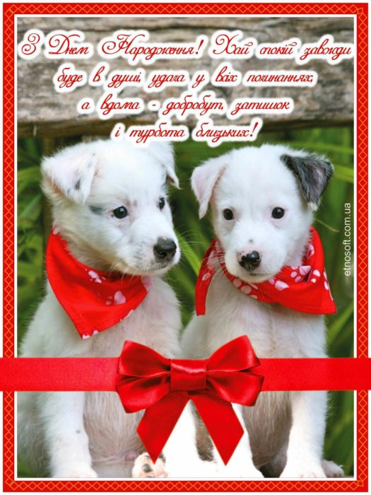 Вітальна картинка з Днем Народження з собаками