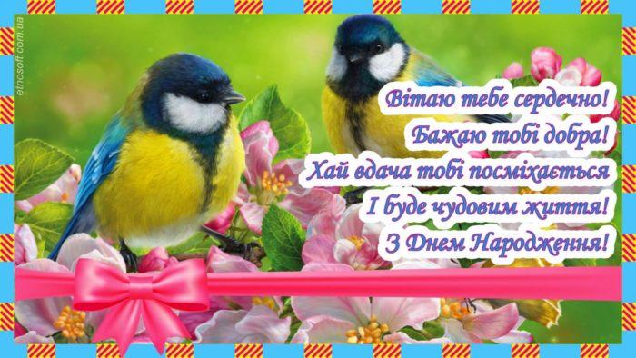 Вітальна листівка з Днем Народження з пташками