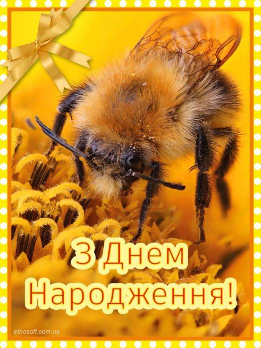 Гарна листівка з Днем Народження з тваринами
